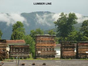 Air Drying Lumber Line