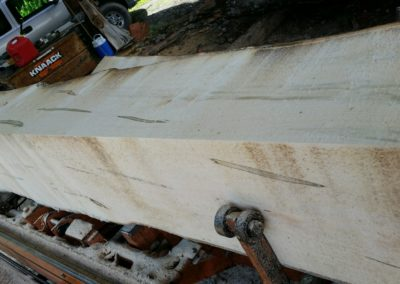 Sawing Ambrosia Maple